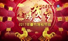 2017.01.29《德清春节特别节目》