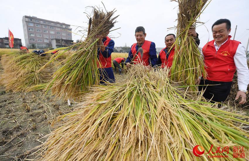 台州路桥:党员扶困助农忙秋收