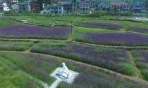 莫干山镇后坞村:发展旅游配套项目 拓展民宿旅游经济