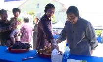 雷甸枇杷文化节:优质瓜果饱口福  海吃枇杷来比拼