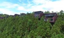 莫干山镇:力争在全省率先建成全域美丽大花园
