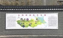 上杨村: 绿色发展助推乡村振兴