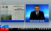 央视特约评论员杨禹点赞德清改革