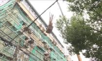 武康街道:私营城整治攻坚战全面打响