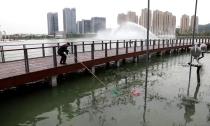 报道后续: 凤栖湖面现大片漂浮物  持续打捞不断出现