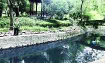 """玫瑰庄园小区旁河水缘何变黑?水流不畅是""""病因"""""""
