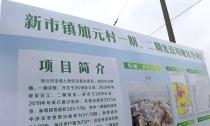 """王琴英赴洛舍镇、新市镇调研一季度""""开门红""""和项目双进双产工作"""
