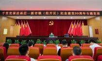 王琴英为新市镇(经开区)党员干部上专题党课