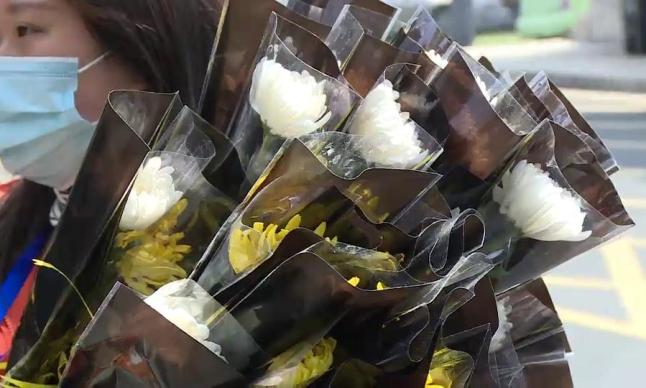 免费献花代祭  守护健康是对逝者的最好告慰